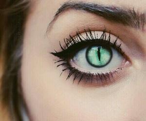 eyes, eye, and cat image