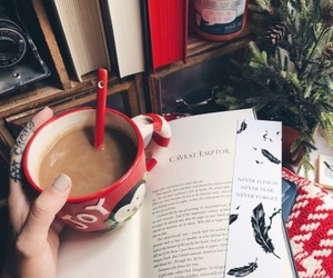 books, christmas, and penguin image