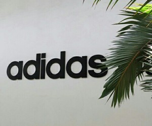 adidas, goals, and green image