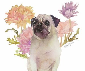 pug, flowers, and dog image