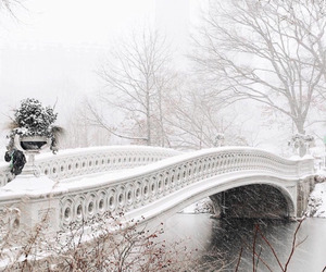 bridge, winter, and landscape image
