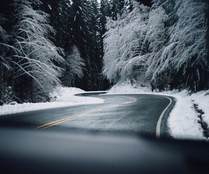 winter, forest, and road image