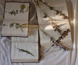 book, flowers, and plants image