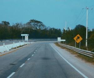 carretera, viaje, and adolescencia image