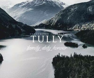 tully, game of thrones, and westeros image