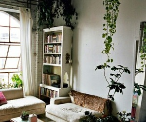 plants, home, and room image