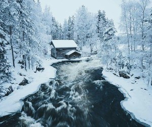 winter, snow, and woods image