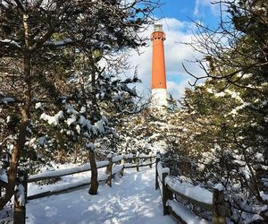beach, winter, and lighthouse image