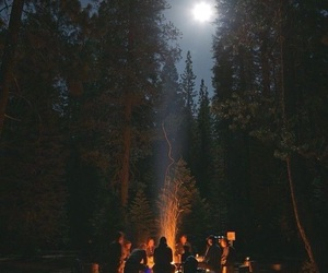 camp, friends, and campfire image