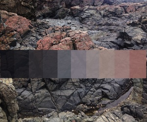 hue, palette, and tone image