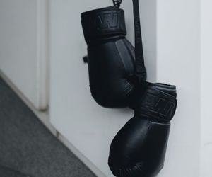 box and gloves image