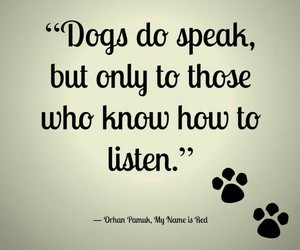 dog, love, and listen image
