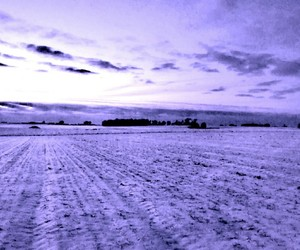 ultraviolet and winter fields image