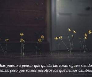 alone, flowers, and phrases image