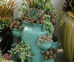 blue, cactus, and lovely image