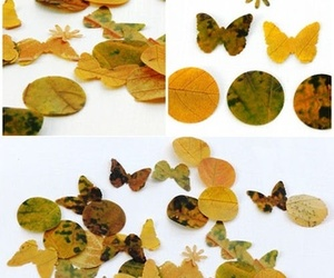 ideas, leaves, and autumn image