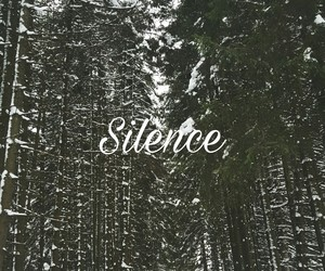 forest, silence, and chill image