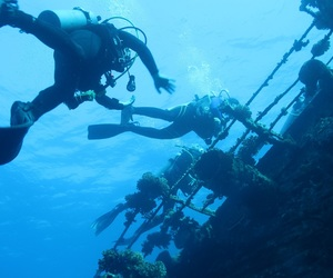 dive, diving, and egypt image
