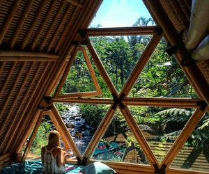 nature, zen, and bamboo house image
