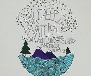 quotes, nature, and Albert Einstein image