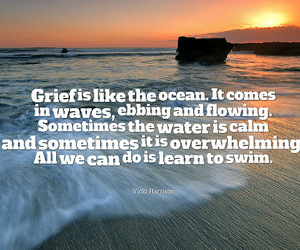 grieve and quote image