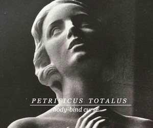 harry potter, spell, and petrificus totalus image