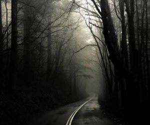 dark, road, and forest image