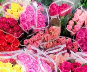 flowers, happy, and pretty image