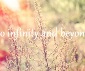 beyond, flowers, and infinity image