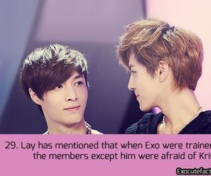 kris, lay, and exo facts image