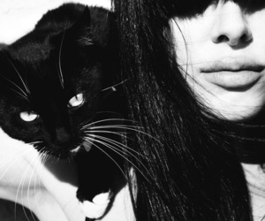 black and white, girl, and cat image