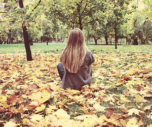 blonde, fall, and park image