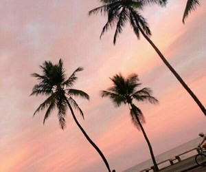 beach, pastel, and places image