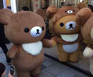 bear, japan, and cute image