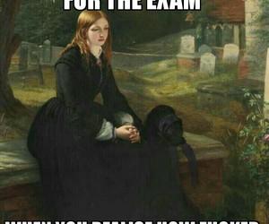 college, exam, and university image