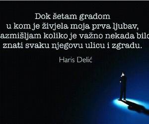 haris delic image