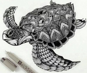 drawing, turtle, and art image
