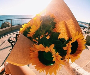 flowers, tumblr, and theme image