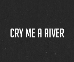 cry, quote, and river image