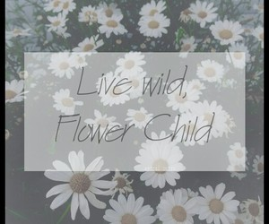 beautiful, flowers, and typography image