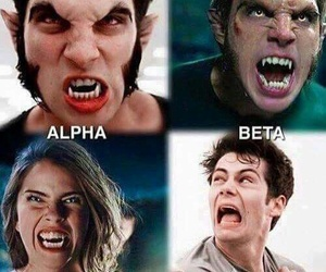 teen wolf, stiles, and alpha image