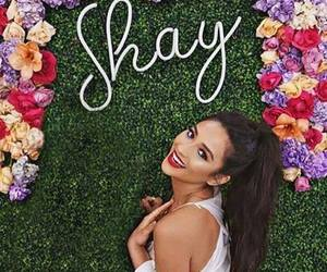 beautiful, pll, and shay mitchell image