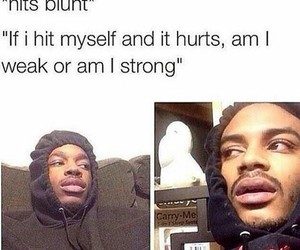 funny, hits blunt, and lol image