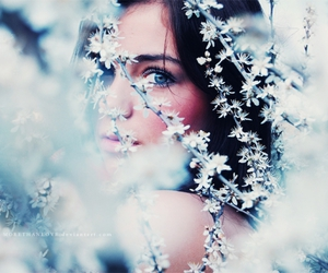 blue, winter, and dreamy image