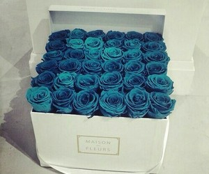 blue, roses, and fashion image