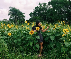 flor, flowers, and girl image