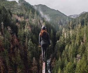 adventure, fall, and forest image