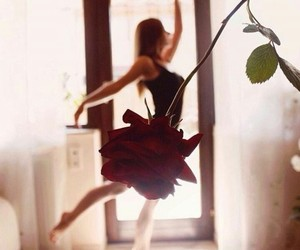 rose ballet image