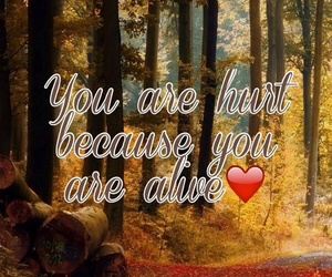 alive, quote, and love image