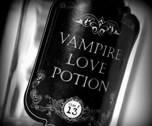 vampire, potion, and love image